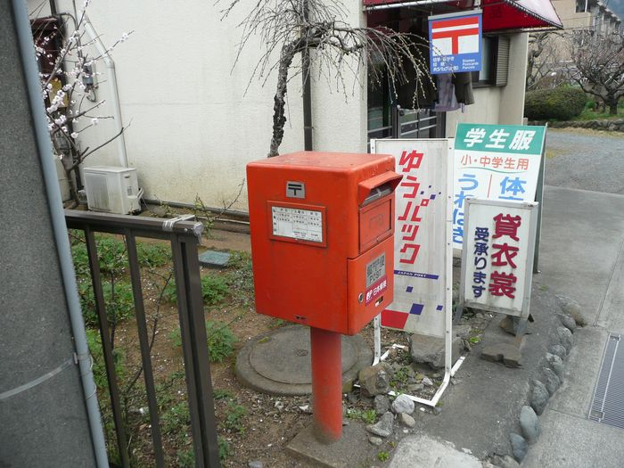ポスト写真 :  : もちづき洋品店 : 東京都青梅市和田町二丁目266