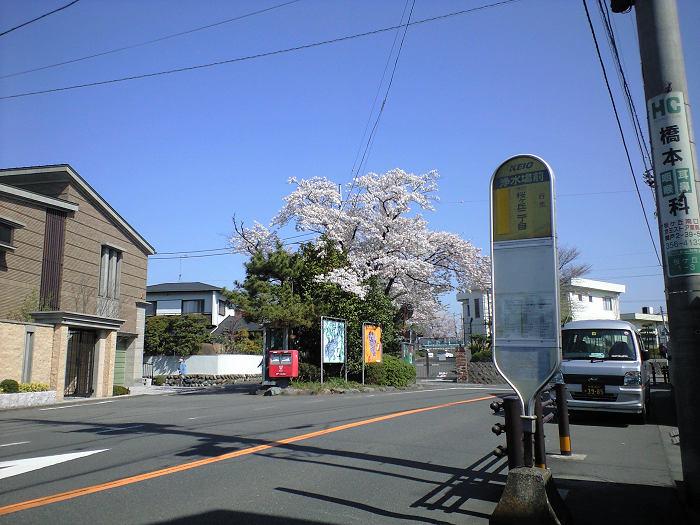 ポスト写真 : 2009-04-10 : 浄水場バス停留所前 : 東京都多摩市桜ヶ丘四丁目10