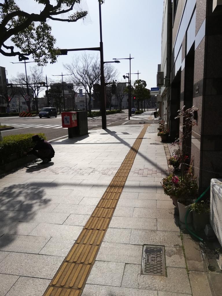 ポスト写真 :  : 青木酒店向かい : 和歌山県和歌山市新通四丁目